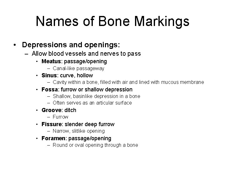 Names of Bone Markings • Depressions and openings: – Allow blood vessels and nerves