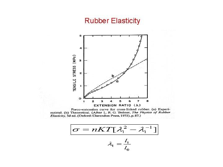 Rubber Elasticity