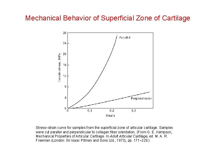 Mechanical Behavior of Superficial Zone of Cartilage Stress–strain curve for samples from the superficial