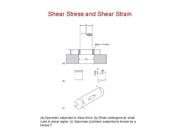 Shear Stress and Shear Strain (a) Specimen subjected to shear force. (b) Strain undergone