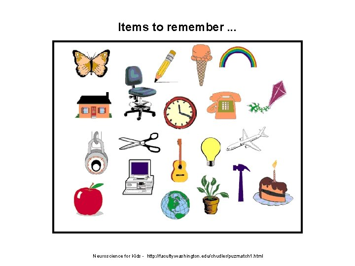 Items to remember. . . Neuroscience for Kids - http: //faculty. washington. edu/chudler/puzmatch 1.
