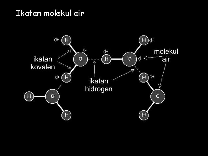 Ikatan molekul air