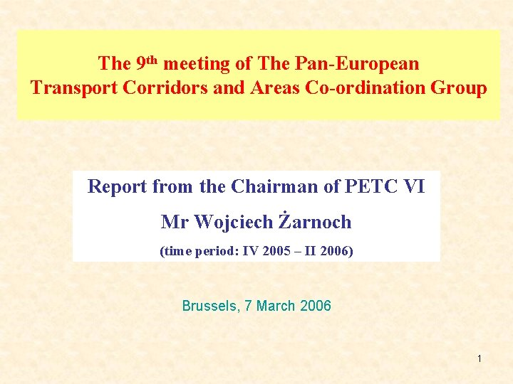 The 9 th meeting of The Pan-European Transport Corridors and Areas Co-ordination Group Report