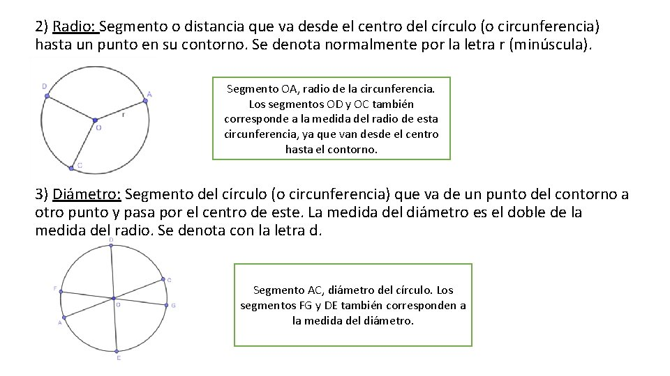 2) Radio: Segmento o distancia que va desde el centro del círculo (o circunferencia)