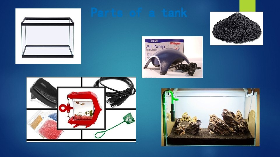 Parts of a tank