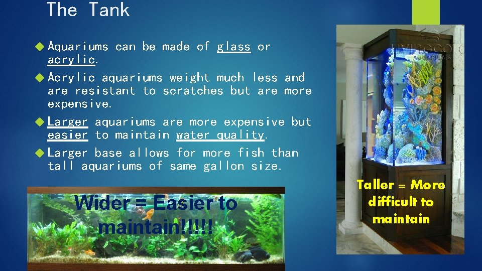The Tank Aquariums can be made of glass or acrylic. Acrylic aquariums weight much
