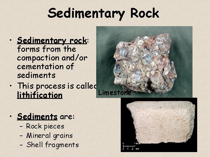 Sedimentary Rock • Sedimentary rock: forms from the compaction and/or cementation of sediments •