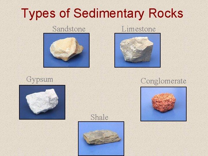 Types of Sedimentary Rocks Sandstone Limestone Gypsum Conglomerate Shale