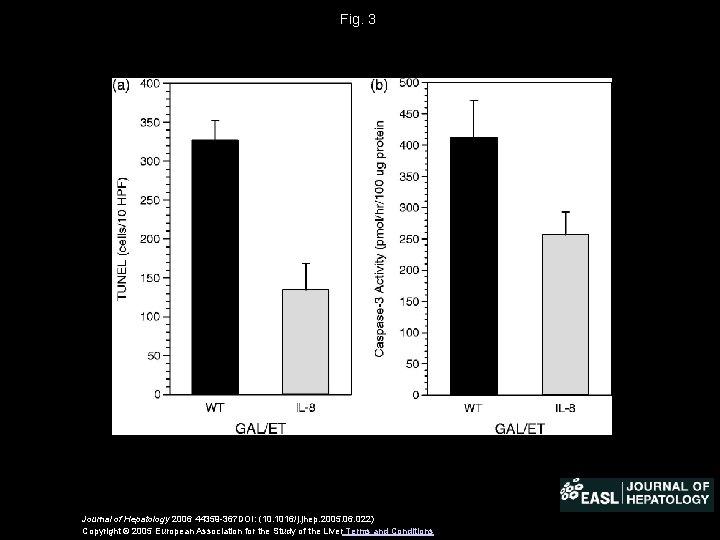 Fig. 3 Journal of Hepatology 2006 44359 -367 DOI: (10. 1016/j. jhep. 2005. 06.