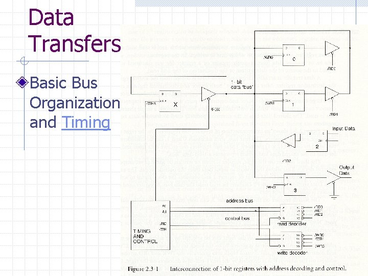Data Transfers Basic Bus Organization and Timing