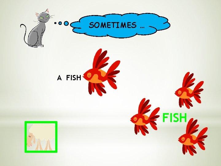 SOMETIMES … A FISH