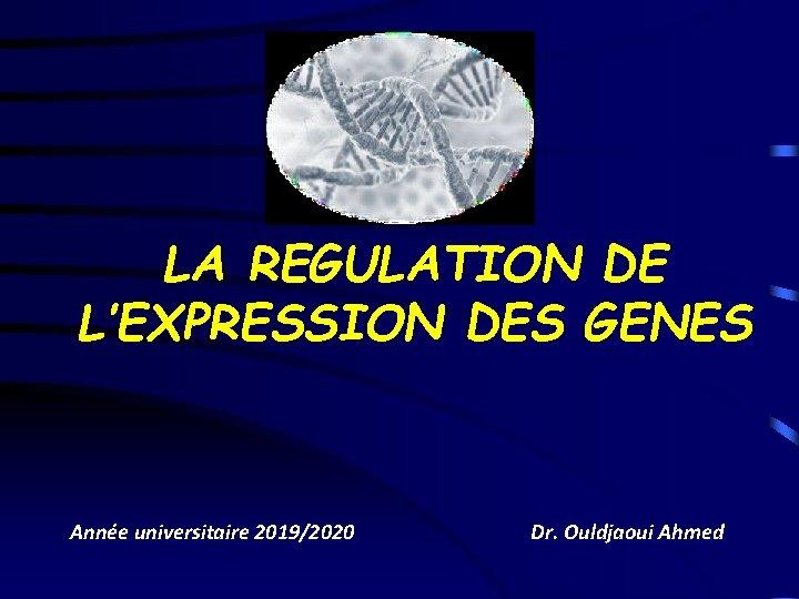 LA REGULATION DE L'EXPRESSION DES GENES Année universitaire 2019/2020 Dr. Ouldjaoui Ahmed