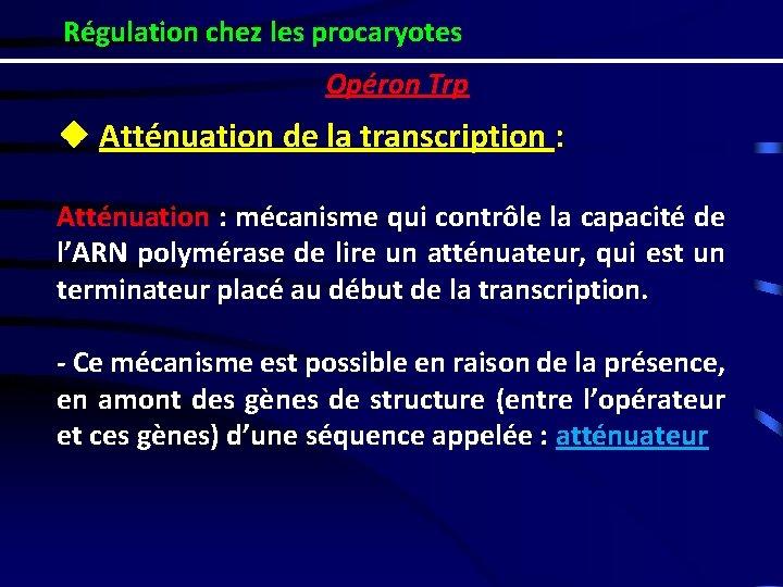 Régulation chez les procaryotes Opéron Trp ❖ Atténuation de la transcription : Atténuation :