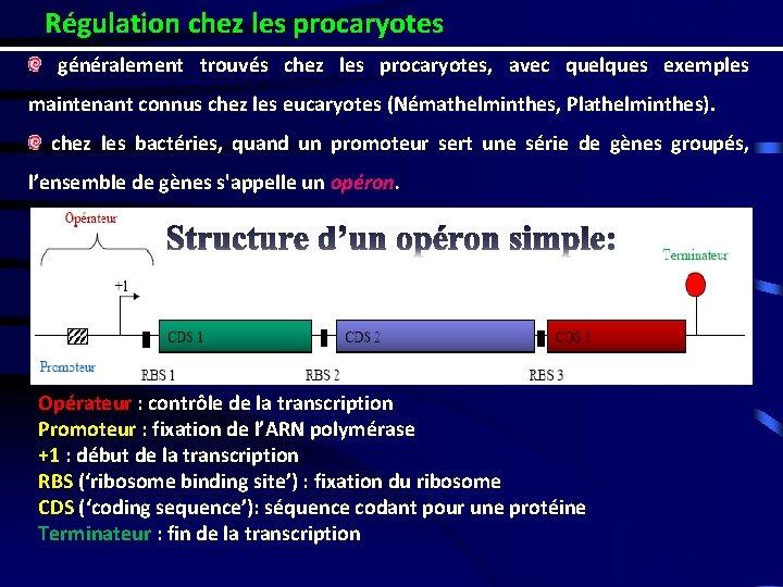 Régulation chez les procaryotes généralement trouvés chez les procaryotes, avec quelques exemples maintenant connus
