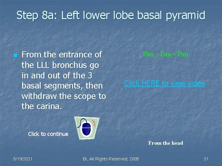 Step 8 a: Left lower lobe basal pyramid n From the entrance of the