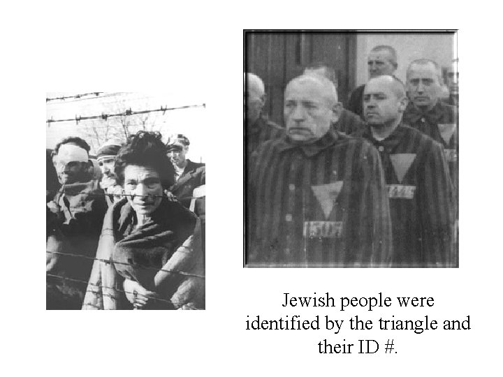 Jewish people were identified by the triangle and their ID #.