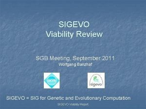 SIGEVO Viability Review SGB Meeting September 2011 Wolfgang