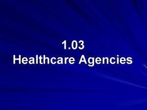1 03 Healthcare Agencies Public Healthcare Systems 1