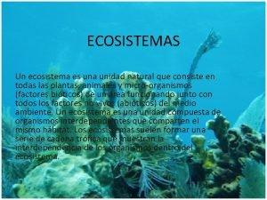 ECOSISTEMAS Un ecosistema es una unidad natural que