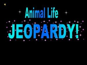 Animal Life Jeopardy Game Category Category African Dwarf
