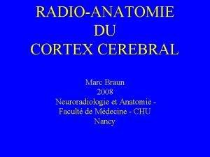 RADIOANATOMIE DU CORTEX CEREBRAL Marc Braun 2008 Neuroradiologie