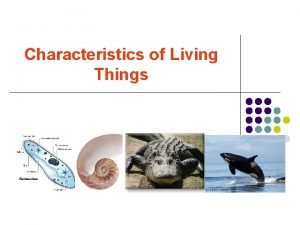 Characteristics of Living Things ORGANISM entire living that