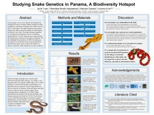 Studying Snake Genetics in Panama A Biodiversity Hotspot
