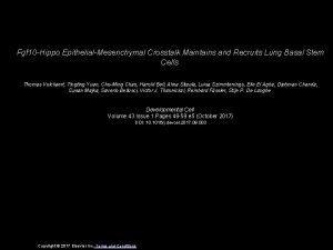 Fgf 10 Hippo EpithelialMesenchymal Crosstalk Maintains and Recruits