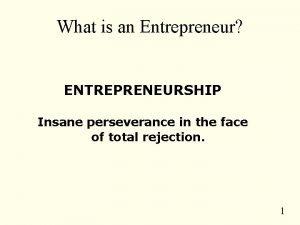 What is an Entrepreneur ENTREPRENEURSHIP Insane perseverance in