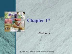 Chapter 17 Abdomen Copyright 2002 Delmar A division