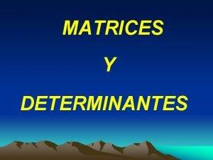 MATRICES Y DETERMINANTES MATRICES Una matriz es todo