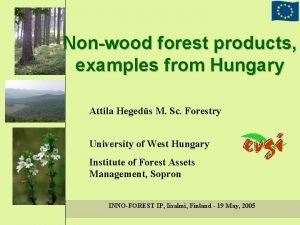 Nonwood forest products examples from Hungary Attila Hegeds