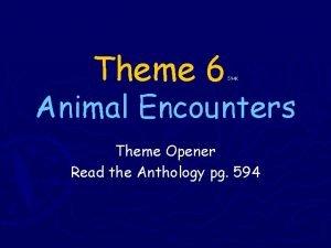 Theme 6 594 K Animal Encounters Theme Opener