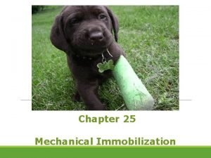 Chapter 25 Mechanical Immobilization Mechanical Immobilization Some people