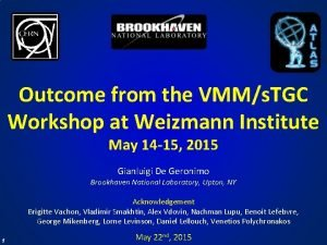 Outcome from the VMMs TGC Workshop at Weizmann