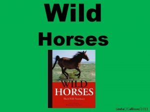 Wild Horses Linda CCallison2011 Other books by Chris