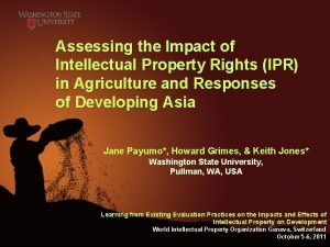 Assessing the Impact of Intellectual Property Rights IPR