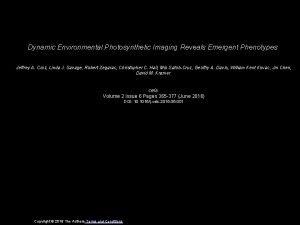 Dynamic Environmental Photosynthetic Imaging Reveals Emergent Phenotypes Jeffrey