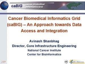 0 Cancer Biomedical Informatics Grid ca BIG An