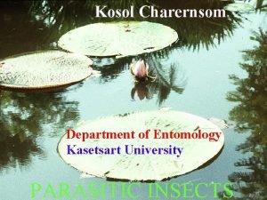 Kosol Charernsom Department of Entomology Kasetsart University PARASITIC