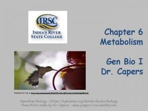 Chapter 6 Metabolism Gen Bio I Dr Capers