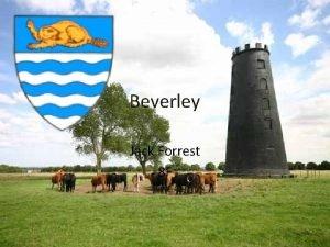 Beverley Jack Forrest 8 F What gave Beverley