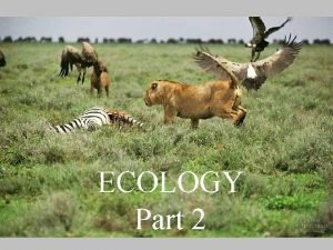 ECOLOGY Part 2 What is Ecology The study