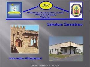 BNC BIOPHYSICS NANOSCIENCE CENTRE CNISM Tuscia University Viterbo