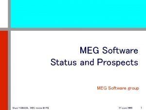 MEG Software Status and Prospects MEG Software group