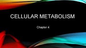 CELLULAR METABOLISM Chapter 4 2 METABOLIC PROCESSES Metabolic