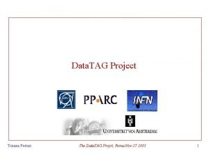 Data TAG Project Tiziana Ferrari The Data TAG