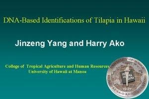 DNABased Identifications of Tilapia in Hawaii Jinzeng Yang