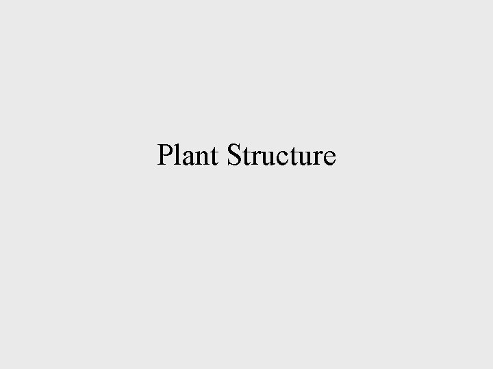 Plant Structure Plant Tissues A tissue is a