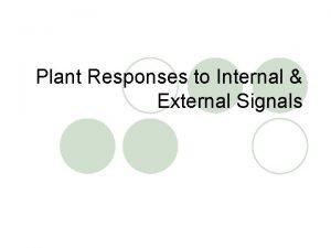 Plant Responses to Internal External Signals Plant Hormones